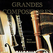 Franz Schubert, Grandes Compositores by Various Artists