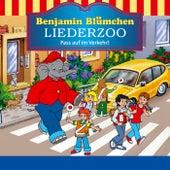 Benjamin Blümchen Liederzoo: Pass auf im Verkehr von Benjamin Blümchen