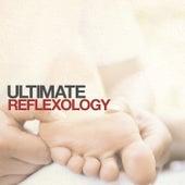 Ultimate Reflexology by Global Journey