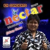 Grupo Néctar en Vivo de Various Artists