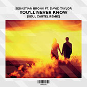 You'll Never Know (Soul Cartel Remix) [feat. David Taylor] by Sebastian Bronk