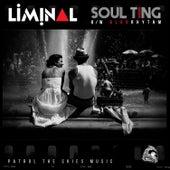Soul Ting / Algorythm by Liminal