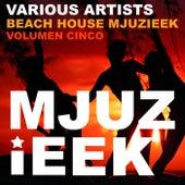 Beach House Mjuzieek, Vol. 5 - EP von Various Artists