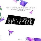 Deep House Selection Vol. 1 de Various Artists