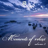 Moments of Relax Vol. 3 by Various Artists