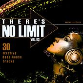 There's No Limit, Vol. 3 (30 Massive Deep-House Tracks) von Various Artists