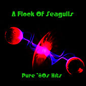 Pure '80s Hits von A Flock of Seagulls