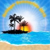 Schlager Sommerhits 2015 von Various Artists