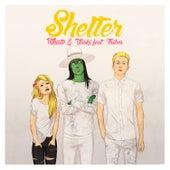 Shelter - Single by Vaski