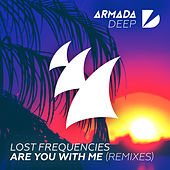 Are You with Me (Remixes, Pt. II) by Lost Frequencies
