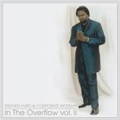 In The Overflow, Vol. II by Stephen Hurd