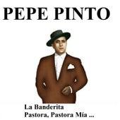 Pepe Pinto de Pepe Pinto