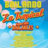 Bailando en la Tropical by Various Artists