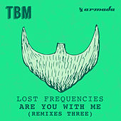 Are You with Me (Remixes, Pt. III) by Lost Frequencies