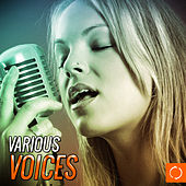 Various Voices by Various Artists