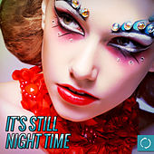 It's Still Night Time von Various Artists