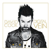 Digital Vein by David Cook