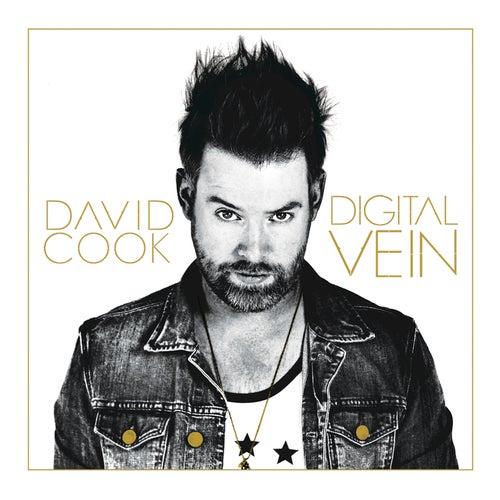 Digital Vein by David Cook