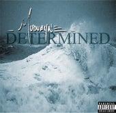 Determined by Mudvayne