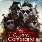 Quiero Confesarte (feat. Maldy, Yailem & Clandestino) de Andino