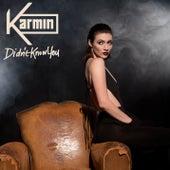 Didn't Know You von Karmin