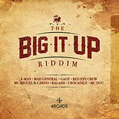Big It up Riddim by Various Artists