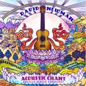 Acoustic Chant: Ukulele Kirtan Serenades by David Newman