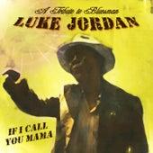 A Tribute to Bluesman Luke Jordan by Various Artists