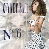 No.6 von Ziynet Sali