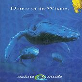 Dance Of The Whales by Mama Blu