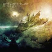 Tribute To Chick Corea by Piotr Matusik Quartet