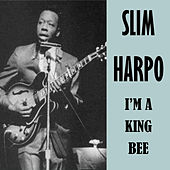 I'm a King Bee by Slim Harpo