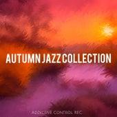 Autumn Jazz Collection von Various Artists