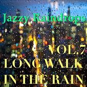 Jazzy Raindrops: Long Walk In The Rain, Vol.7 von Various Artists