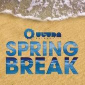 Ultra Spring Break by Various Artists