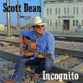 Incognito by Scott Dean