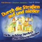 Durch die Straßen auf und nieder - Viele schöne Herbst- Und Laternenlieder by Various Artists