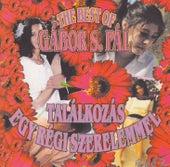 The Best of Gábor S. Pál: Találkozás egy régi szerelemmel by Various Artists