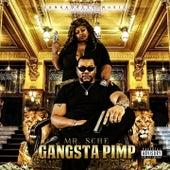 Gangsta Pimp by Mr. Sche