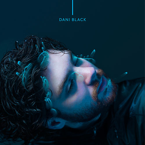 Seu Gosto - Single by Dani Black