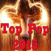 Top Pop 2015 von Various Artists