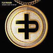 Who Wants to Rock (feat. feat. Riff Raff) by Flux Pavilion