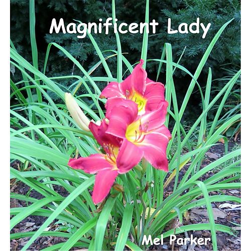 Magnificent Lady by Mel Parker