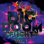 Bigroom Flight, Vol. 1 - EP by Various Artists