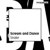 Snake von The Dance
