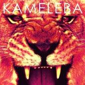 El Activista (feat. Raly Barrionuevo) by Kameleba