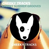 Cheeky Summer Grooves - EP von Various Artists