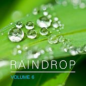 Raindrop, Vol. 6 by Various Artists