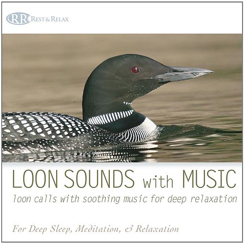 Lifescapes Solo Piano: Top Relaxing Piano For Stress... By