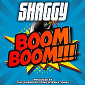 Boom Boom by Shaggy